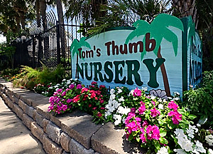 tom-thumb-nursery