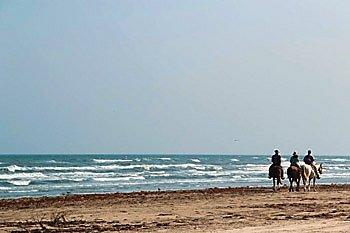 galveston-tx-beach-2