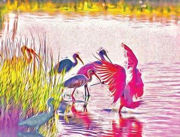 Magnificent-Pastel-birds