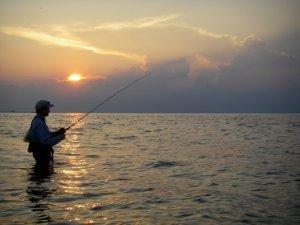 galveston fishing285