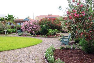 Betty-Head-Oleander-Garden-Park